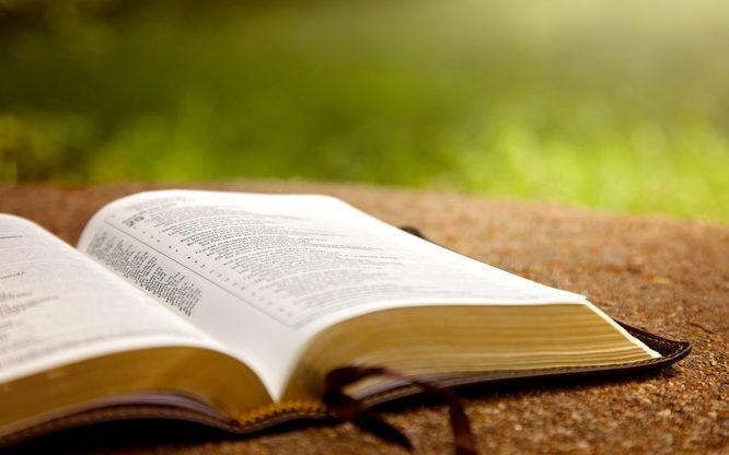 Rancangan Pola Kehidupan (Kejadian 2:7)