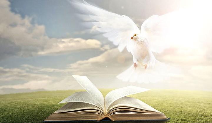 Relasi Roh Allah (I Korintus 14 : 1-5)